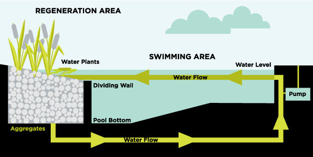 Des Moines Natural Swimming Pools - Swim Ponds
